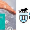 Formation pour le DU Transformation numérique